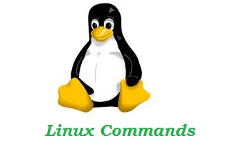 Useful Commands For Linux