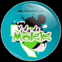 Vida de Moleke