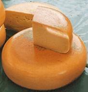 Horma de queso Gouda y varias rebanadas