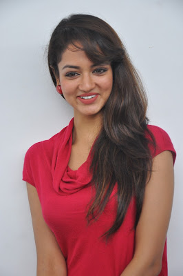 smoky beauty Shanvi in red hot dress at adda success meet