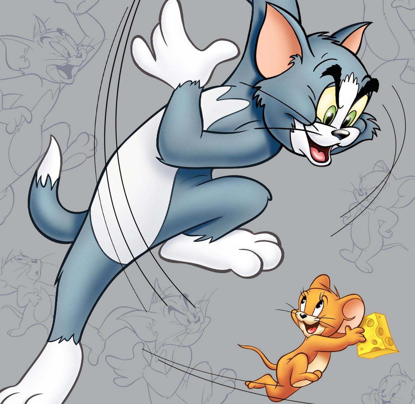Tom N Jerry Cartoon Characters : American top cartoons tom and jerry hd wallpaper