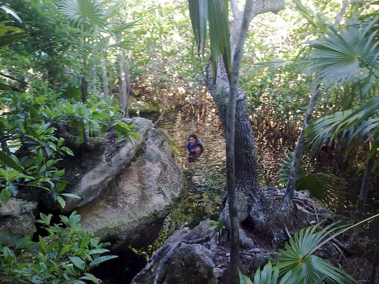 Xel-Ha (Riviera Maya)