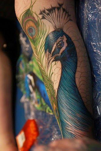 Peacock Tattoo