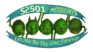 SS501 Let me be the one Forever