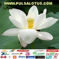 Pulsalotus lotusreload pulsa lotus reload lotusreloadcenter  pusat lotus reload,pulsa serpong banten pulsa tangerang Aceh Medan