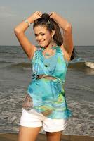 Priyamani, transparent, dress, at, beach