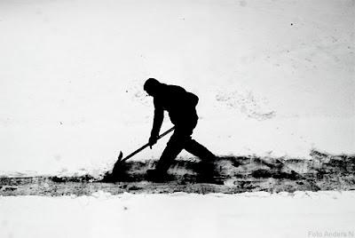 snö, snöskottare, snöskottning, snöskottare, snöskyffel, snow, foto anders n