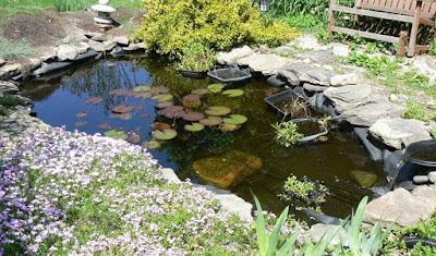 Como hacer un estanque huerto y jard n la huerta de ivan for Antorchas para jardin caseras