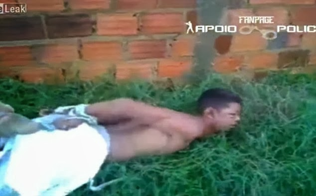 Justice Brazil-style: 'Thief' hog-tied And Thrown On Anthill In Brazil