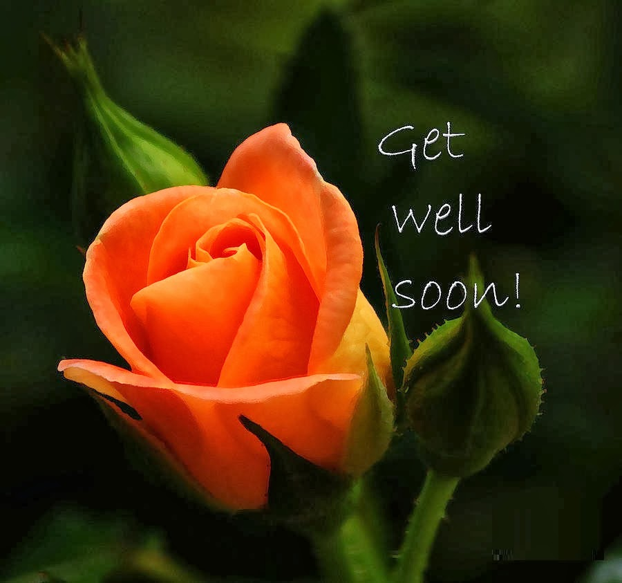 All greetings free download get well soon card get well wishes get well soon card get well wishes m4hsunfo