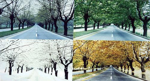 Seosan-si South Korea  city photo : wning Hangul: Seasons of Korea