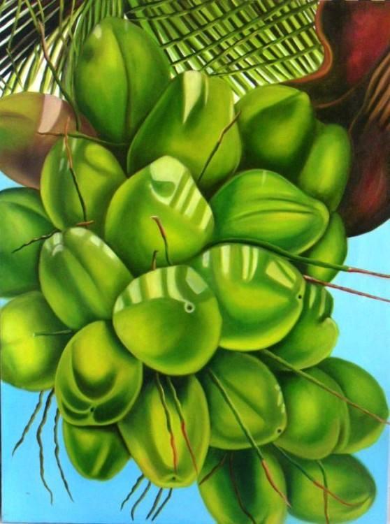 COCOS DA BAHIA