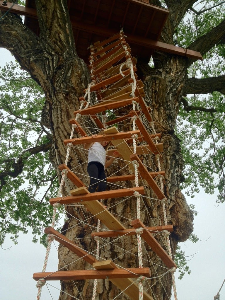 the treehouser part 16 hanging the treehouse rope ladder