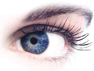 pada posting sebelumnya kita sudah mengenal  6 Macam penyakit mata yang tidak menular