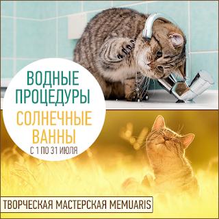"""Тематическое задание """"Водные процедуры и солнечные ванны"""" до 31 июля"""