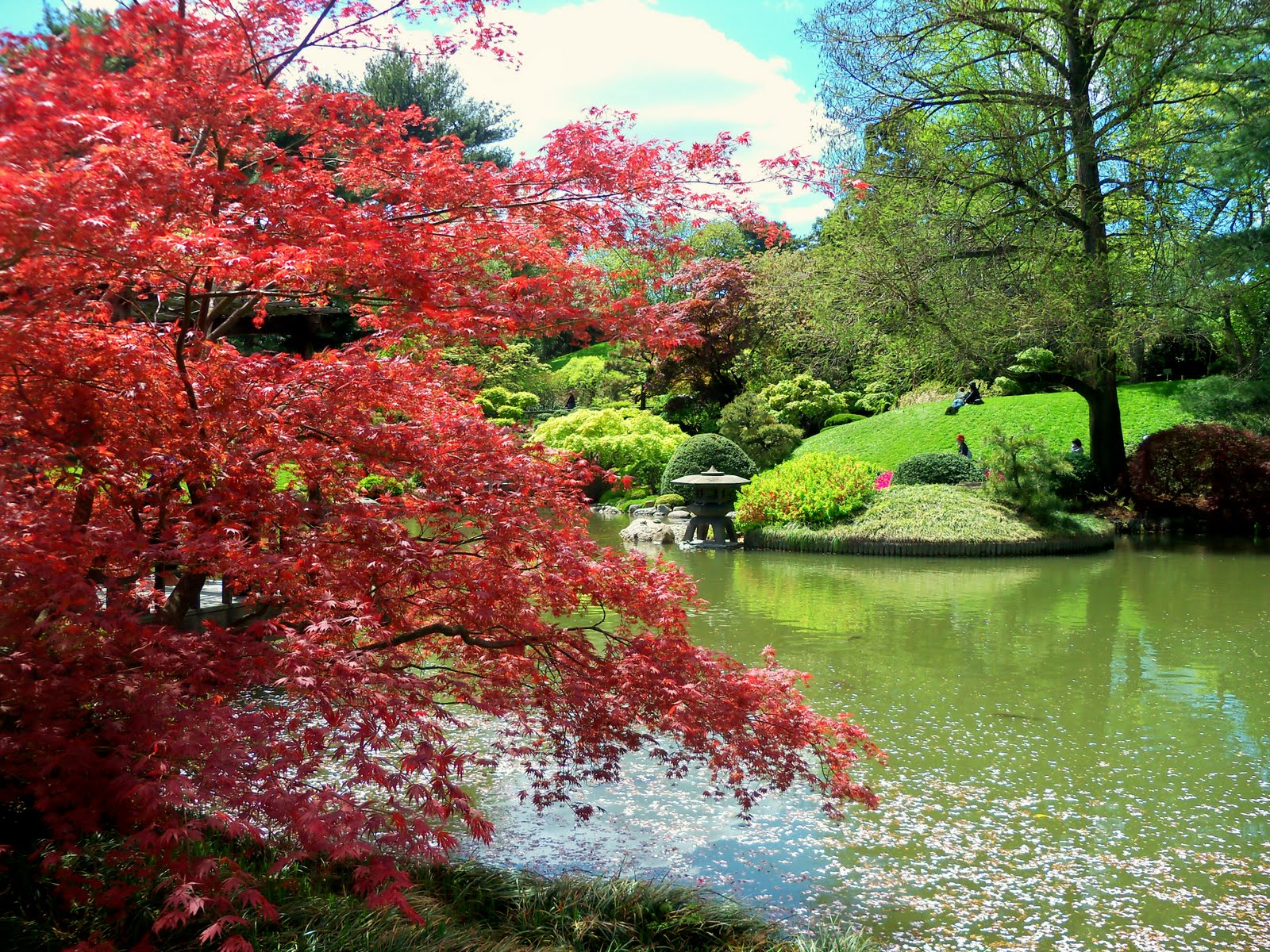 1000 Images About Brooklyn Botanical Garden On Pinterest 400 x 300