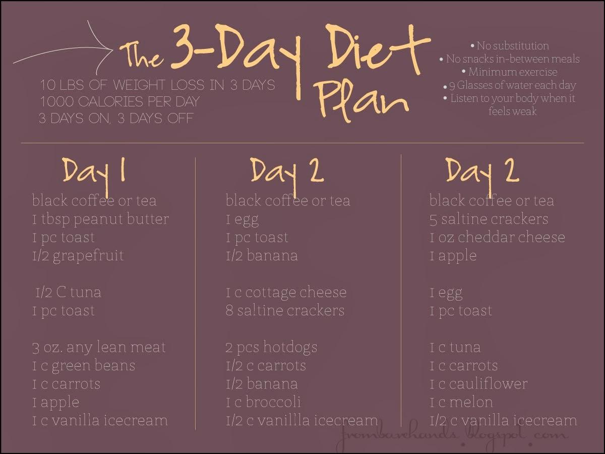the 3-day diet plan, diet plan, diet