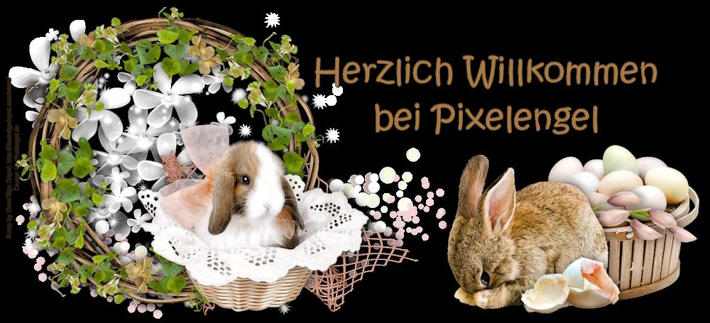 ~ ♥~ Pixelengel ~♥~