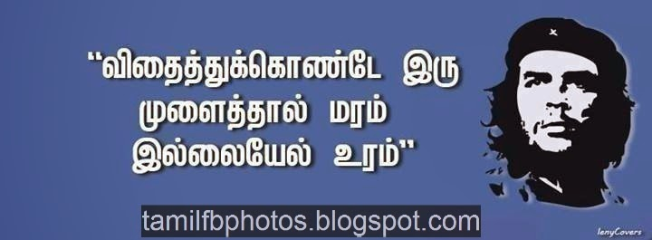 Seguvara Quote, Seguvara photos, seguvara thathuvam photos free download