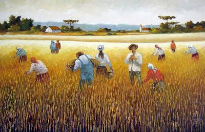 Trigo, Ceifa do Trigo, Ceifeira, Ceara de Trigo, Campo de Trigo, Fernando Ikoma