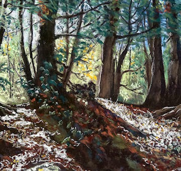 Sunlit Forest     Pastel on Sennelier Paper