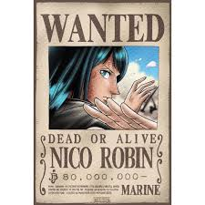 One piece only anime - Affiche wanted one piece ...