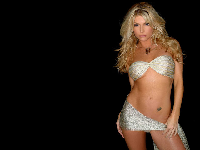 Brande Roderick sexy in lingerie