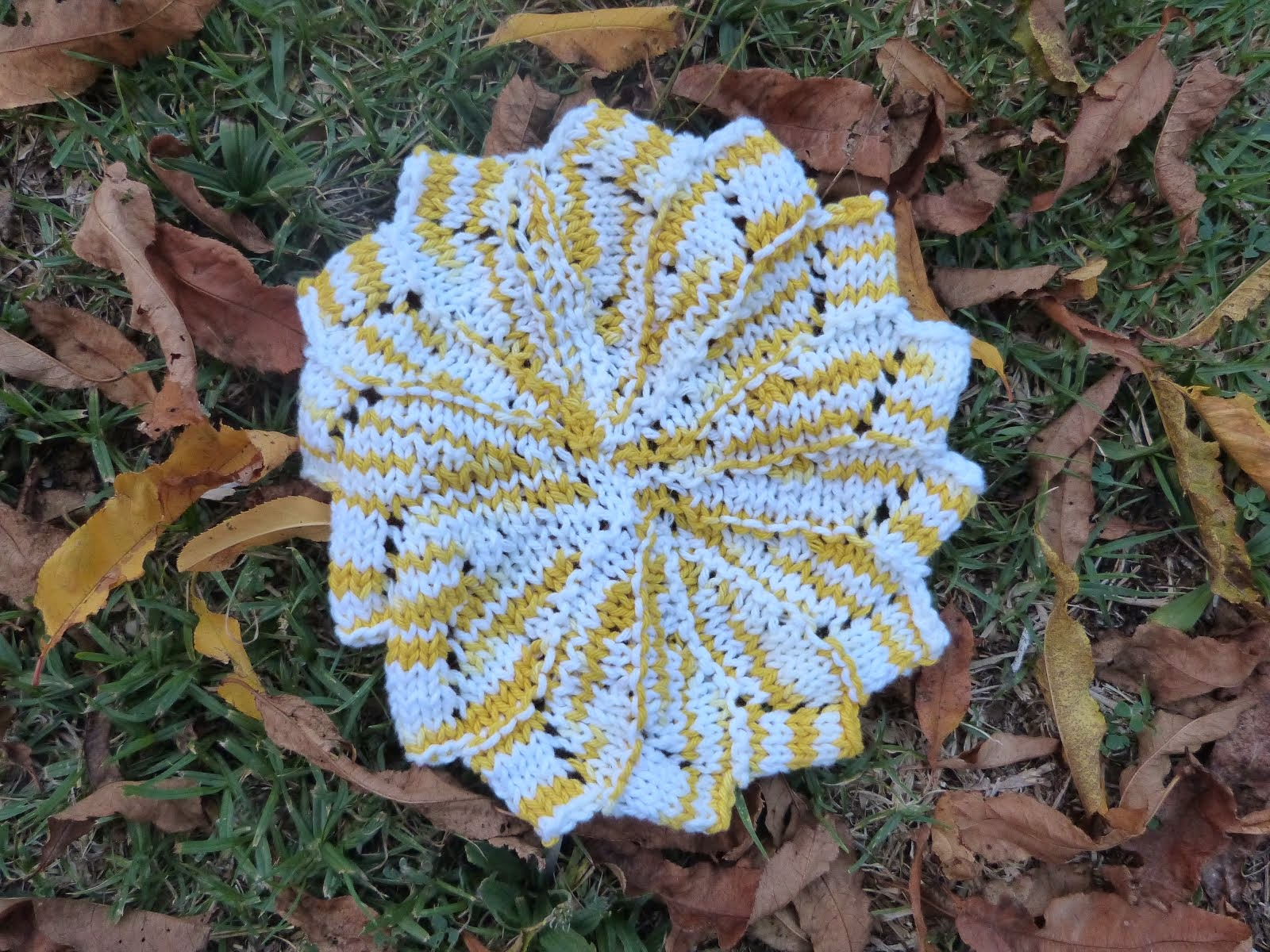 Dishcloth swap link