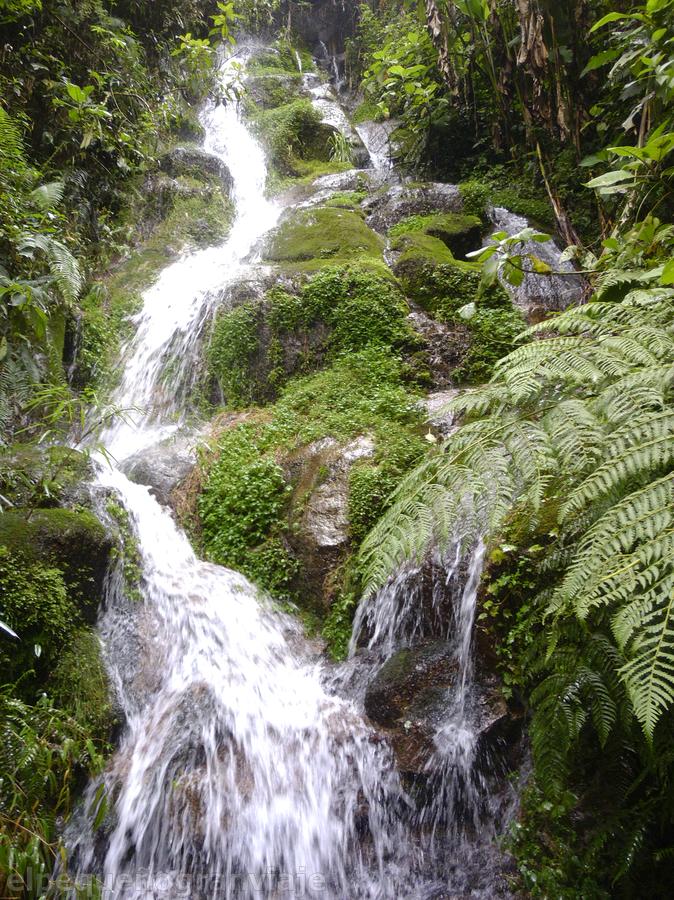 Cascada Choro trek