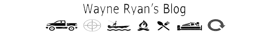 Wayne Ryan's blog