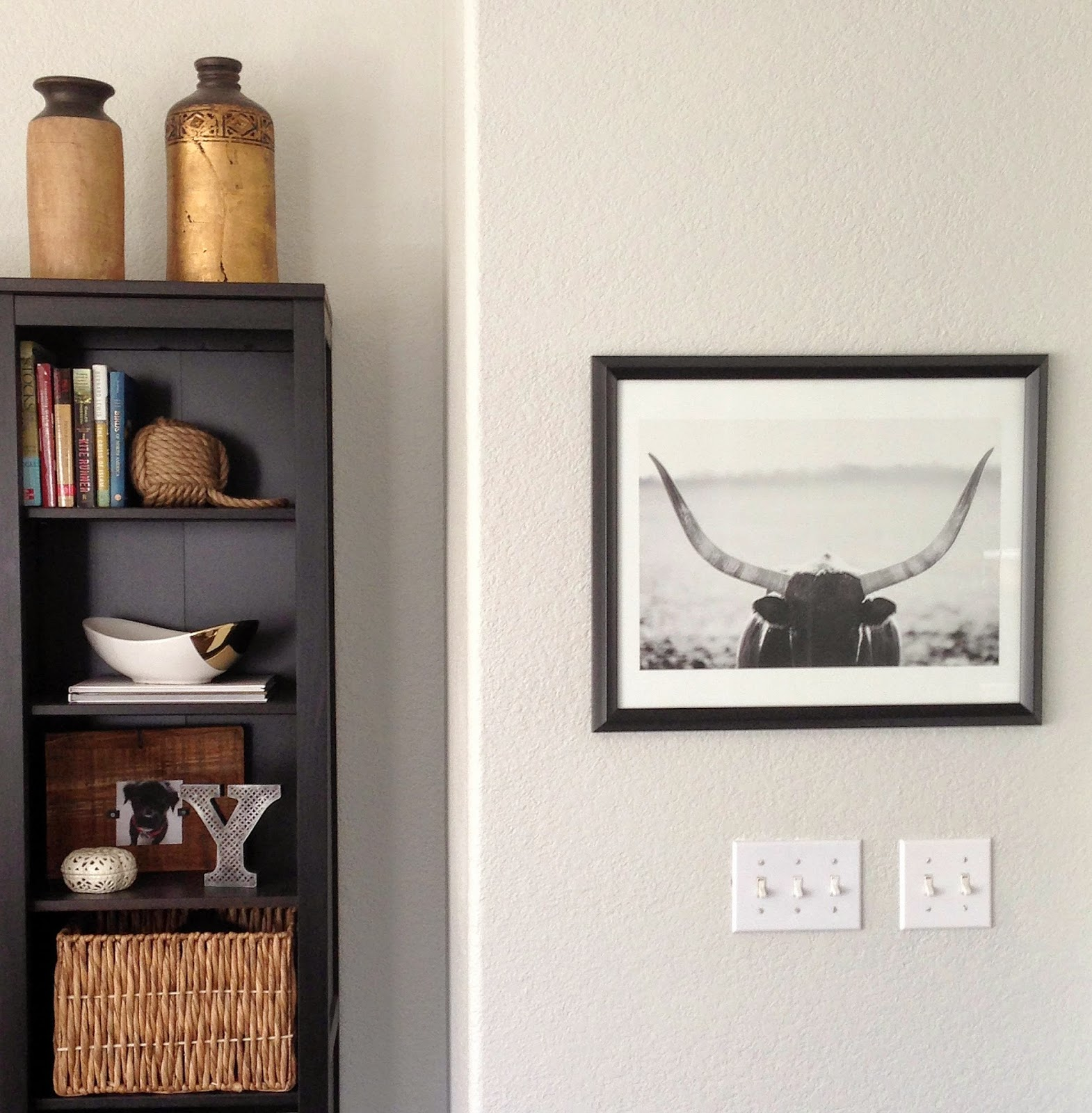 bull framed photograph minted