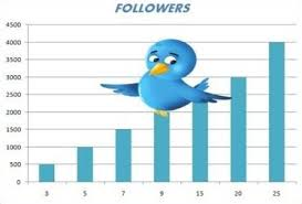 Auto Followers Twitter 2013 Work