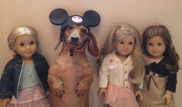 Cute dogs - part 8 (50 pics), dog wears mickey mouse hat sitting with dolls