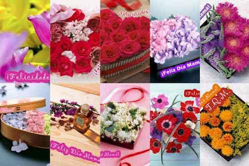 Arreglos florales para el Día de las Madres I (mensajes)