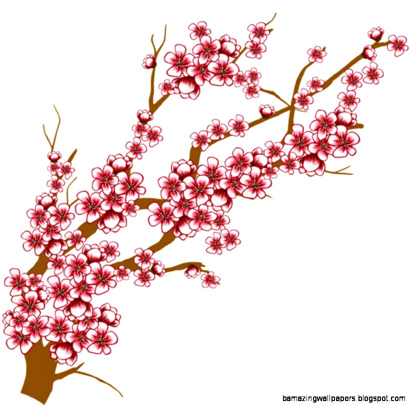 cherry blossom tree branch clip art amazing wallpapers rh bamazingwallpapers blogspot com cherry blossom clipart images cherry blossom clip art borders