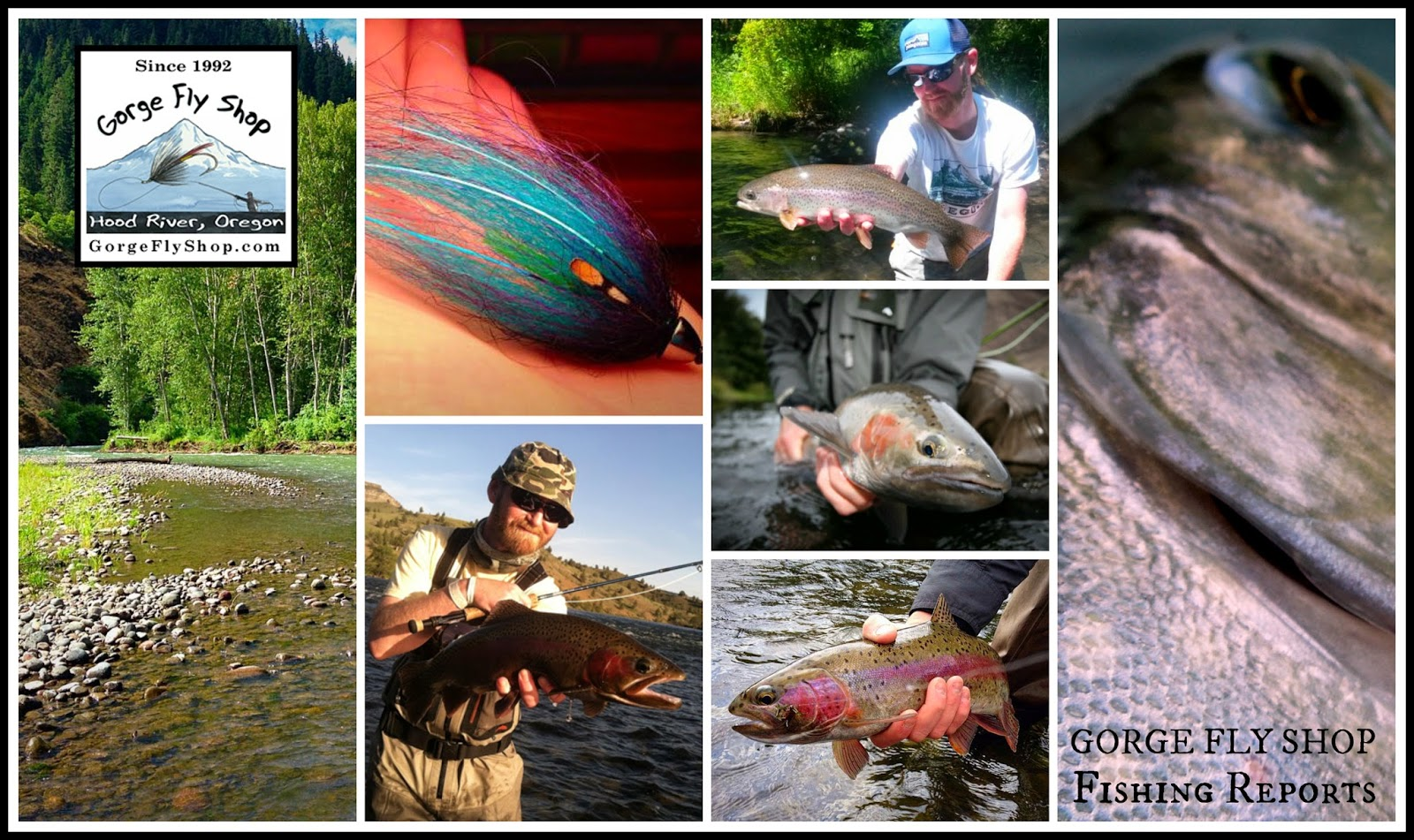 Gorge fly shop blog fishing report august 24th for Bucs fishing report