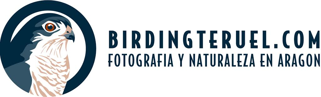 BIRDINGTERUEL.COM