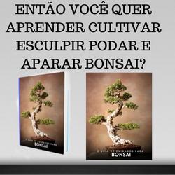 Árvore bonsai A arte de aparar esculpir e podar