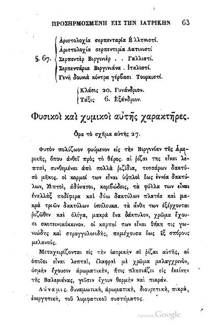 Αριστολοχία η αειθαλής-Aristolochia sempervirens
