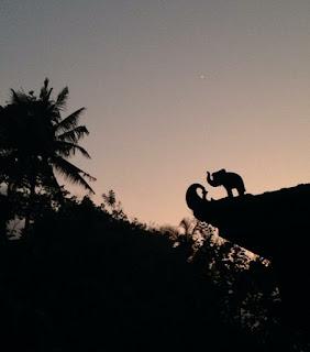 Bali YTT