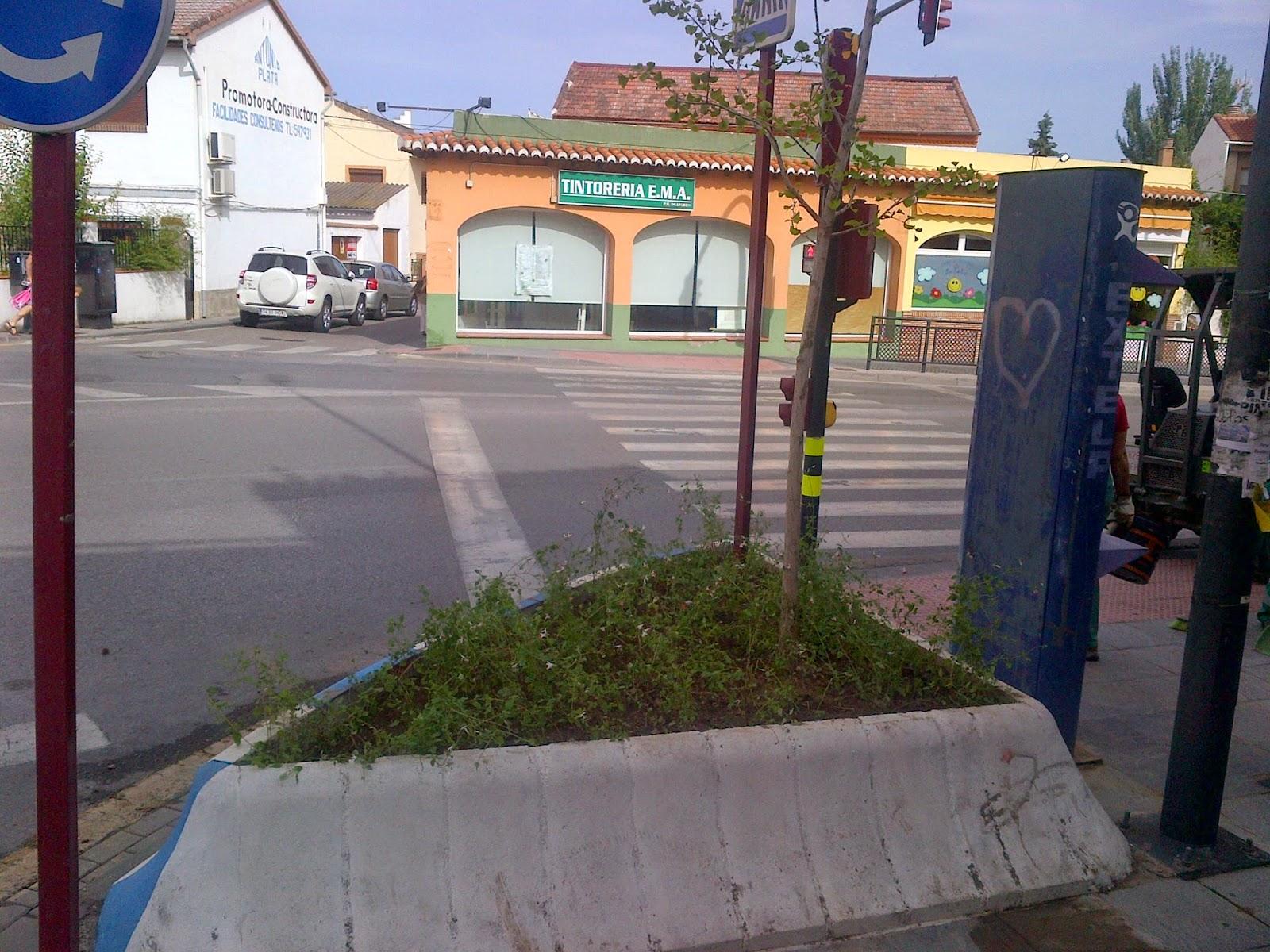 parques y jardines de ogijares jardinera calle granada