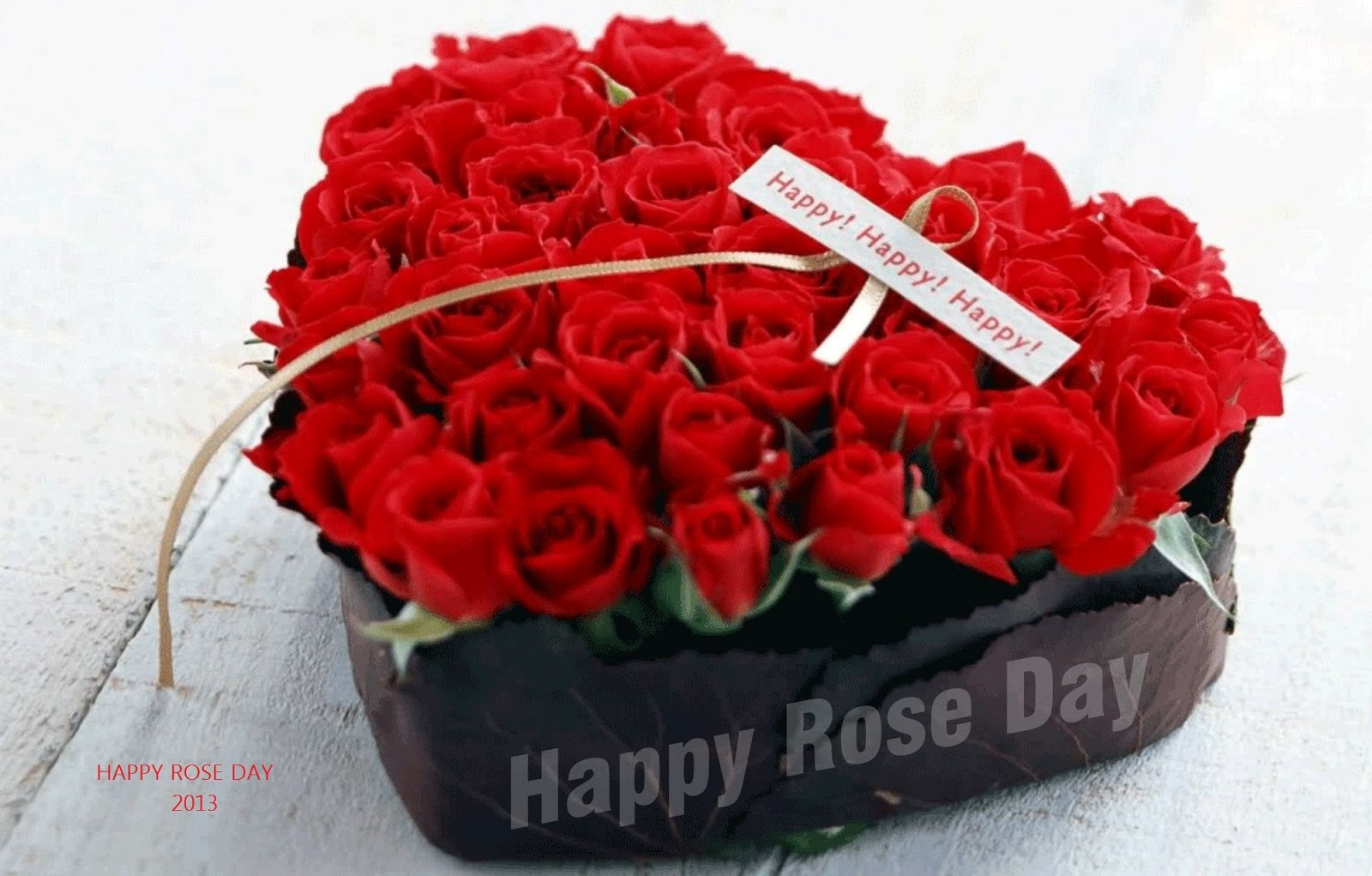 Image result for rose day