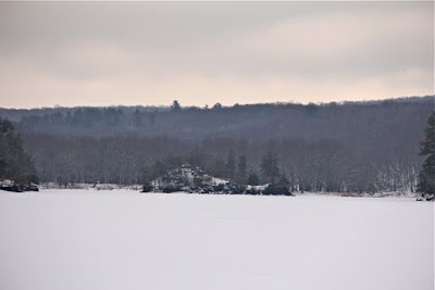 St. Croix River island in Winter