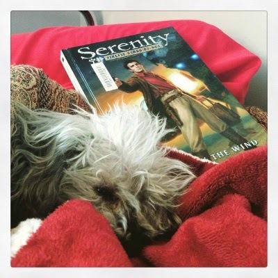 A fuzzy grey poodle, Murchie, lays dejectedly beside a hardcover copy of Leaves on the Wind. Most of his body is covered by a red tapestry comforter. The book's cover features a white man in vaguely Western dress brandishing a gun.