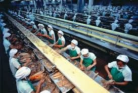 Lowongan Kerja Tenaga Produksi Di Grobogan Tanpa Syarat Ijazah Harian Blora