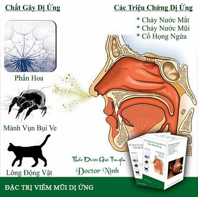 Thuốc trị viêm mũi dị ứng bằng thảo dược gia truyền Doctor Ninh