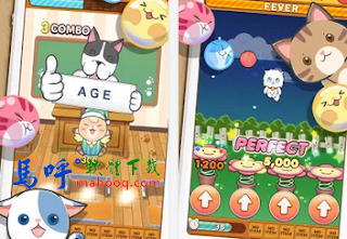 LINE PongPongPong APK / APP Download、蹦蹦貓 LINE PongPongPong Android APP
