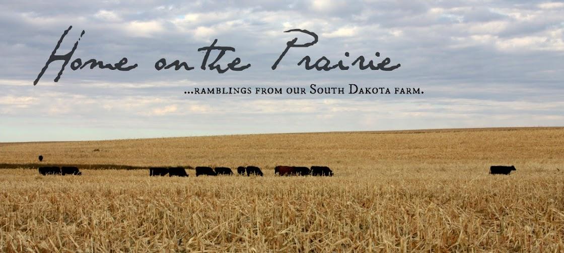 Makin' a Home on the Prairie