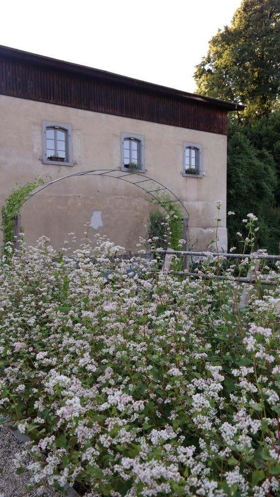 Parque Merian Gärten Basel Suíça