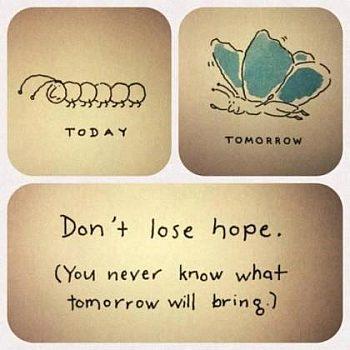 nadzieja, motyl, gąsielnica, robak, metamorfoza, przepoczwarzenie, lepsze jutro